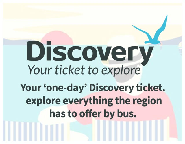 Discovery Ticket